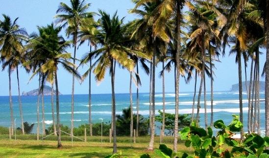 جزيرة ساو تومي 1428504115-big